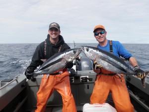 Westport Tuna